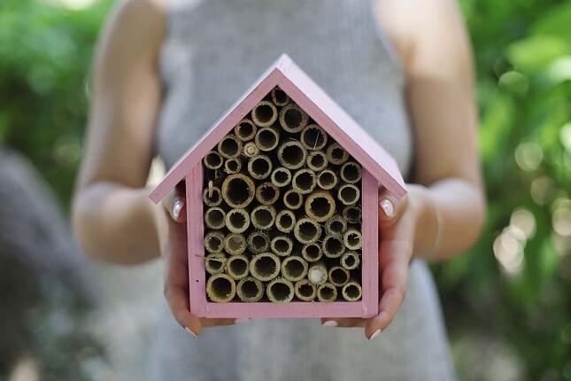 Στην κατασκήνωση της οργάνωσης The Bee Camp τα παιδιά κατασκευάζουν καταφύγια για τις μέλισσες.
